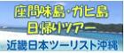 座間味島・ガヒ島ツアーは近畿日本ツーリストへ