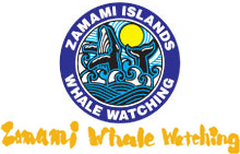 Association of zamami village whale watching