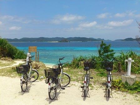 ニシバマ自転車 - 小.JPG